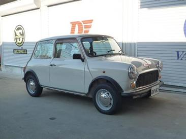 ROVER MINI1000 AT